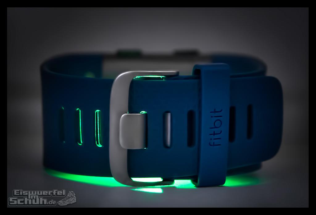 EISWUERFELIMSCHUH – FitBit Surge Jens Voigt Tour de Berlin Fitness Tracker Smartwatch (7)