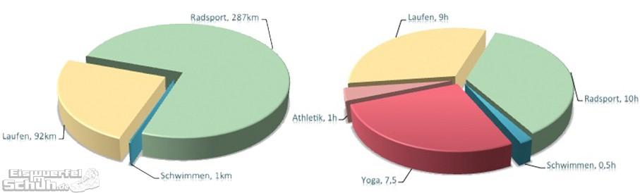 Triathlon Training Auswertung von EiswuerfelImSchuh