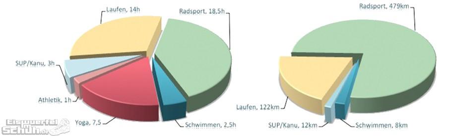 EiswuerfelImSchuh Triathlon Training Zusammenfassung