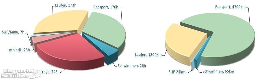 Triathlon Training Auswertung Grafik