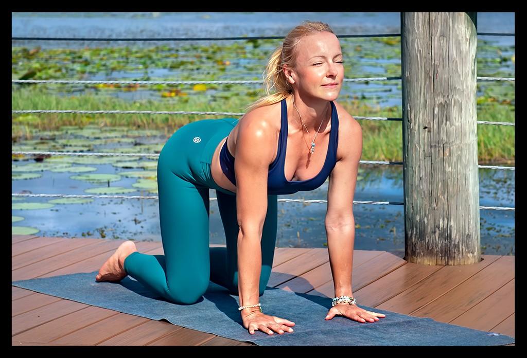Vierfüßer Stand - Mit Yoga das Immunsystem stärken