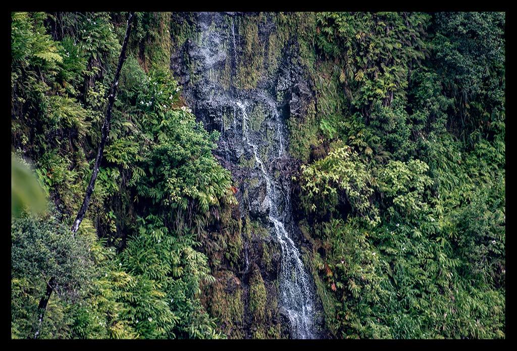 Reisebericht Hawaii Akaka Falls State Park Wasserfall