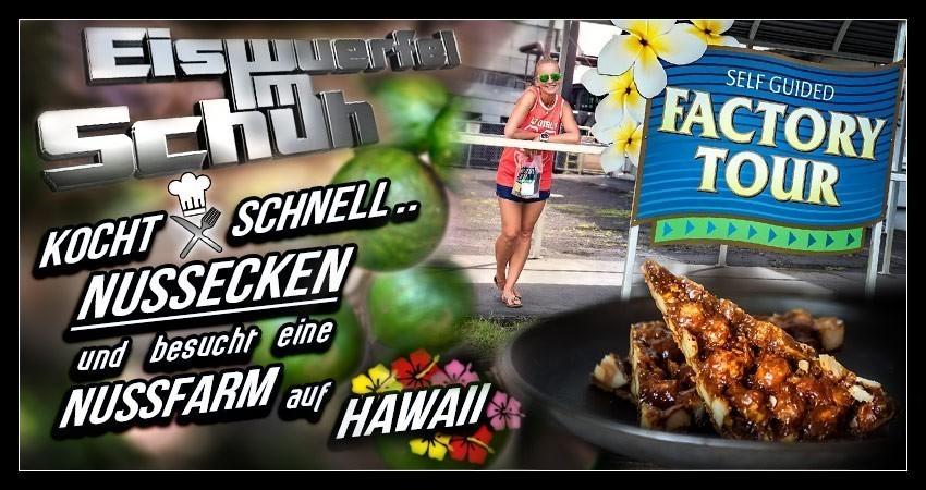 Macadamia Nussecken Rezept und Macadamia Farm Mauna Loa Big Island Hawaii Besuch