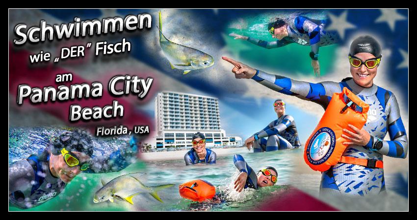 Freiwasserschwimmen Panama City Beach Banner