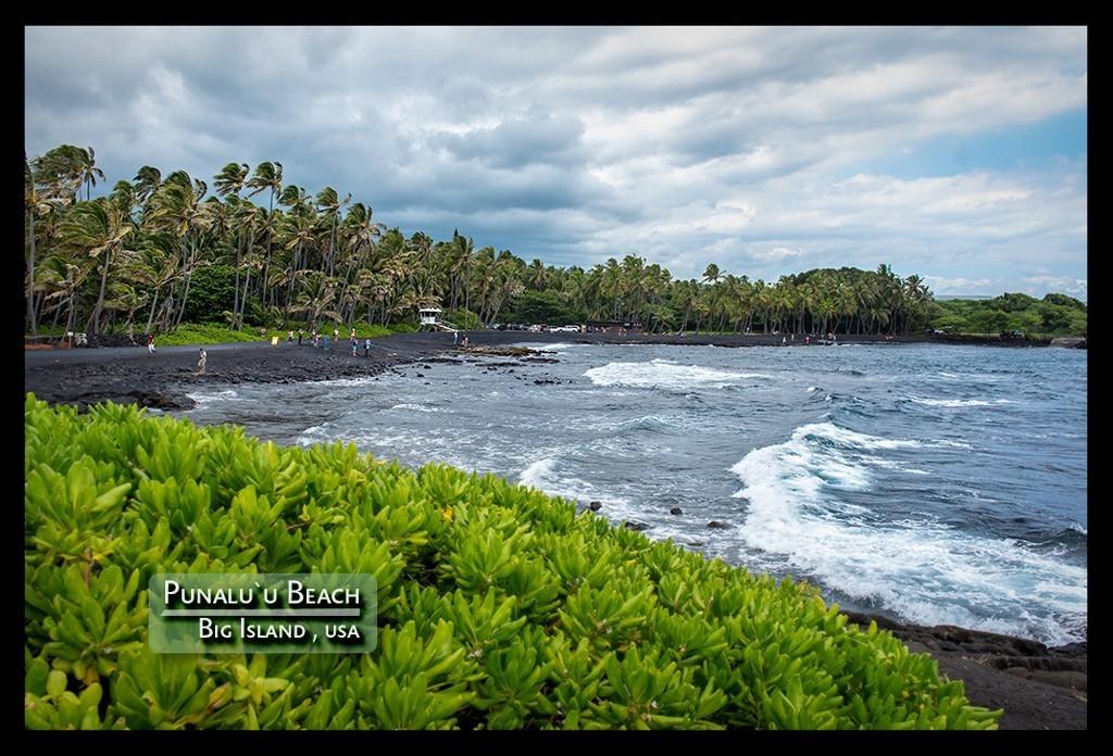 Big Island Punaluu Beach Travelblog