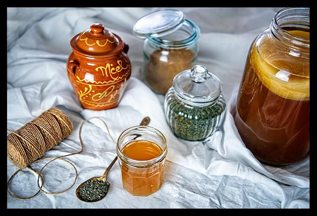 Kombucha Tee Zutaten Rezept selber zu Haus brauen