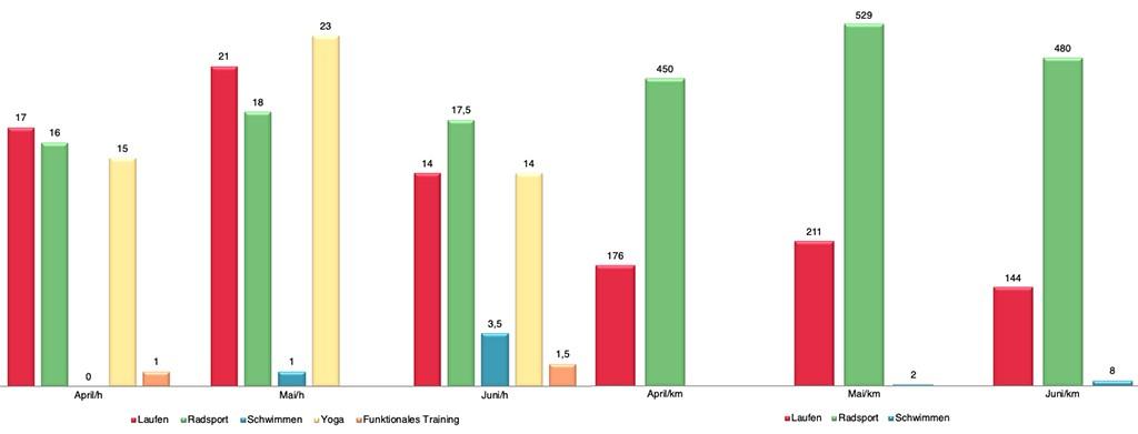 Triathlon Training Auswertung Diagramme Zusammenfassung